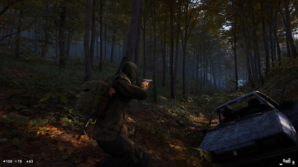 photo from deadside PC game